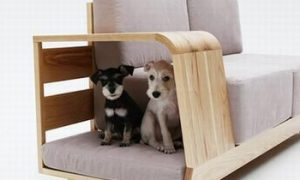 Для хозяина — диван, для питомцев — домик