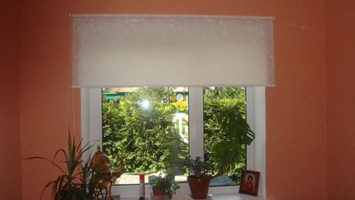 рулонные шторы на пластиковые окна на фото