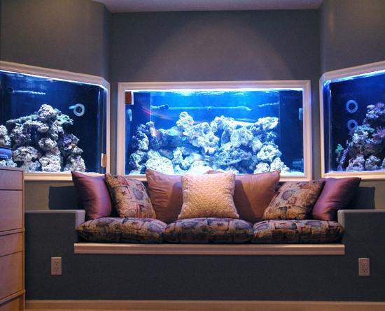 akvarium-v-stene-09