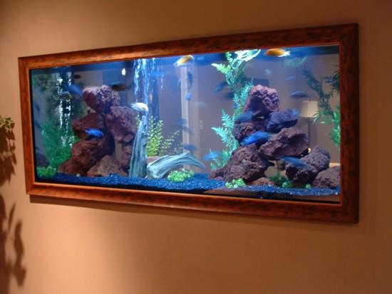 akvarium-v-stene-10