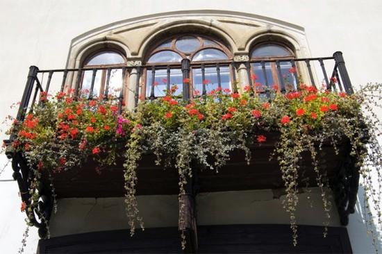 oformlenie-balkona-cvetami-03