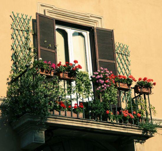 oformlenie-balkona-cvetami-06