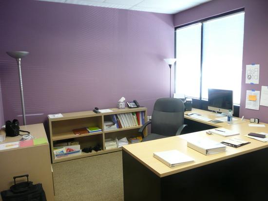 cvet-sten-ofisa-04