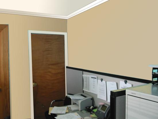 cvet-sten-ofisa-06