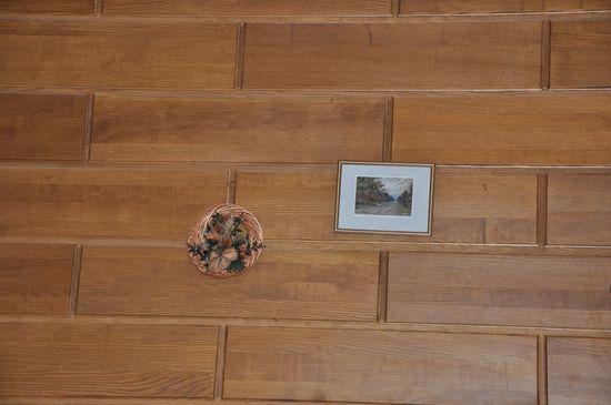 dekorativnye-paneli-v-interiere-08