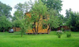 Зеленый газон на даче – красота и удобство