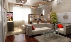 Спальня и гостиная в одной комнате — идеи дизайна