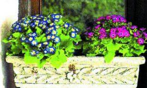 Ящики для цветов на балкон — удобно и красиво