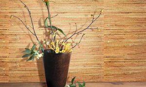 Бамбуковые обои в интерьере: джунгли зовут