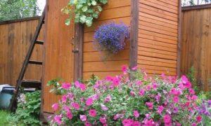 Деревянный летний душ для дачи: фото идеи
