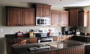 Интерьер кухни темного цвета: фото идеи