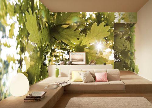 Дизайн фотообоев на стенах
