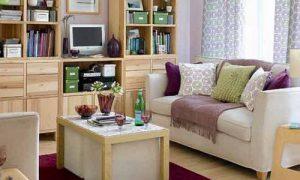 Как обустроить маленький зал: фото варианты