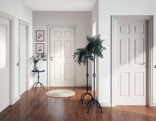 mezhkomnatnye-dveri-interer_8