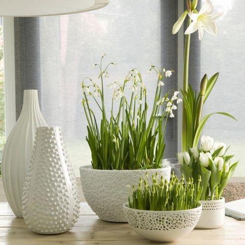 zhivye-cvety-v-interere_12