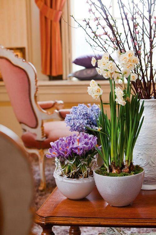 zhivye-cvety-v-interere_7