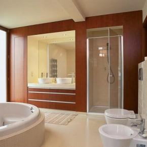 Продумываем интерьер душевой комнаты: фото идеи