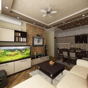 Обустраиваем большую гостиную с кухней 17 кв. метров