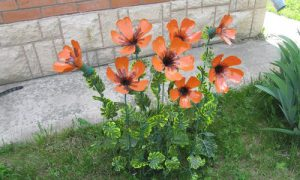 Креативные идеи для сада и огорода своими руками