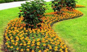 Оригинальное оформление цветника на даче – рабатка