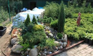 Как создать красивый альпинарий в саду на участке