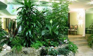 25 идей как обустроить зимний сад в частном доме