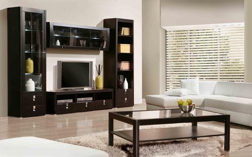 Корпусная мебель из дерева в гостиной