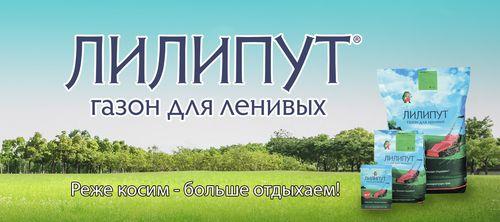 Газон Лилипут